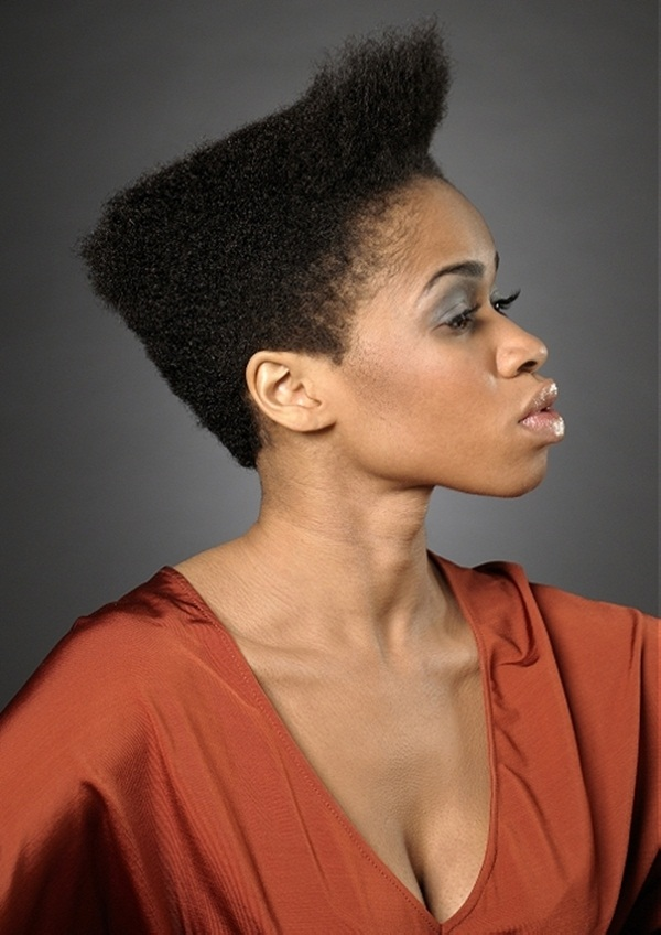 Short Curly Hairstyles for Black Woman (16)