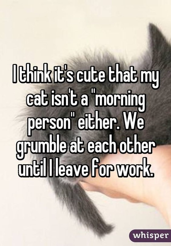 funny-good-morning-quotes-20